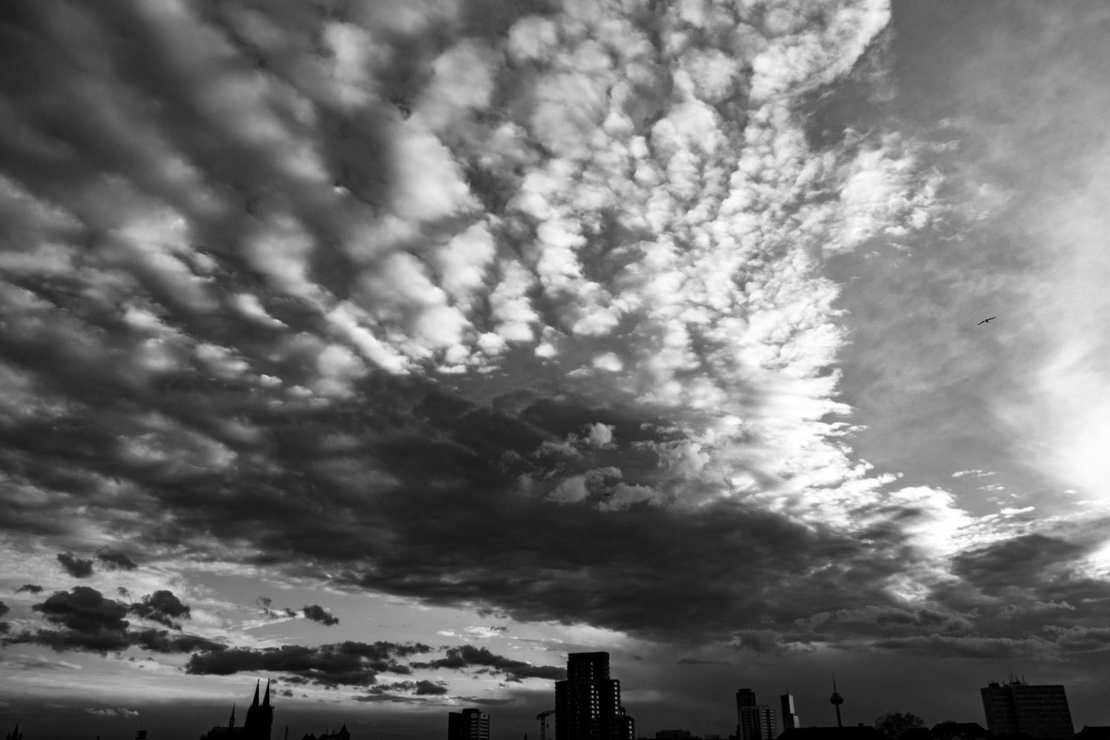 Der Himmel über Köln ...