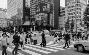 Japan-259