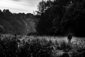 Natur-09